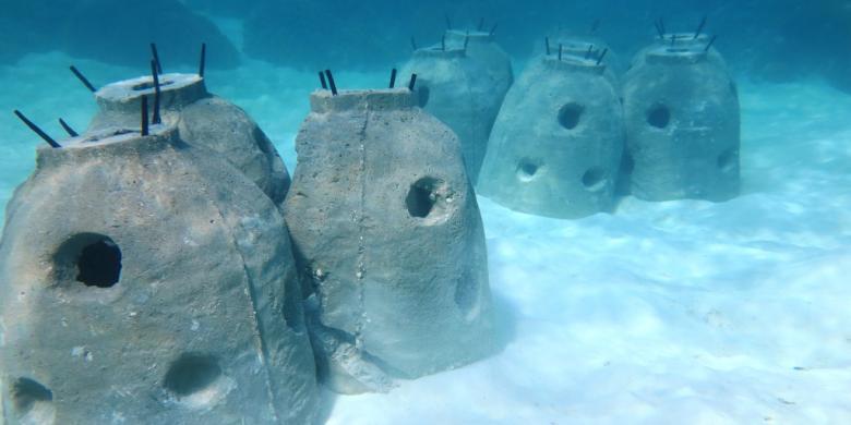 """Keren, Ada """"Stupa"""" Di Bawah Laut Gugus Derawan"""
