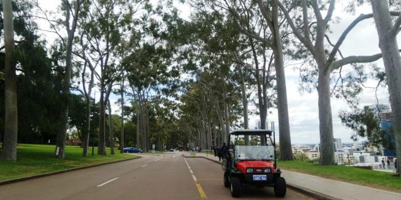 Bersantai Menikmati Kota Dan Langit Perth Dari Kings Park