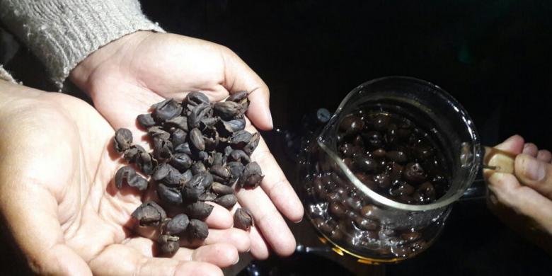 Mengenal Cascara, Teh Dari Kulit Kopi Di Banyuwangi