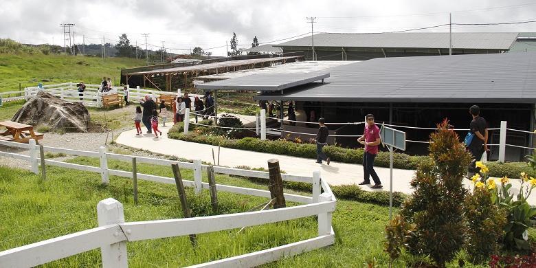 Desa Cattle Farm Di Sabah, Cocok Untuk Wisata Keluarga Di Malaysia
