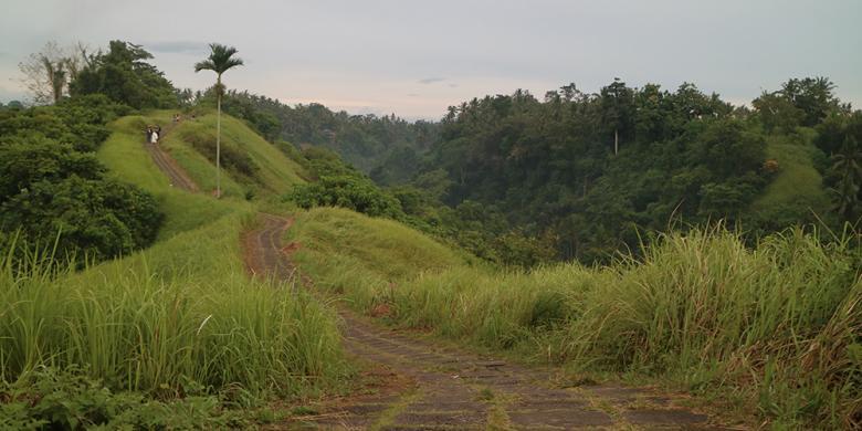 5 Hal Yang Harus Anda Tahu Sebelum Mendaki Bukit Campuhan, Ubud