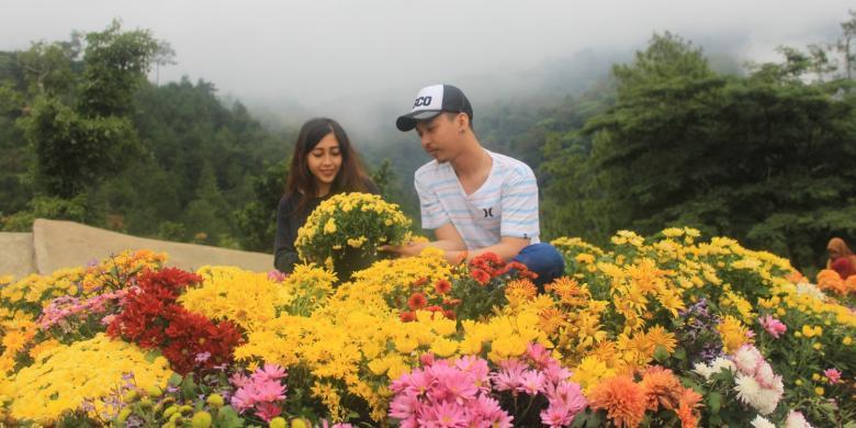 Batu Flower Garden, Wisata Romantis Idola Kaum Remaja