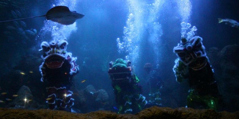 Imlek 2017, Ancol Hadirkan Atraksi Barongsai Dalam Air