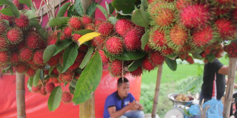 Aceh Besar Dan Kisah Penjual Rambutan Aceh