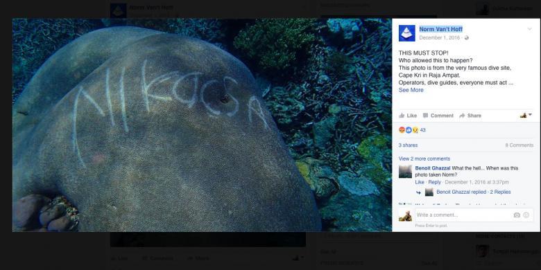 Berkaca Dari Kasus Raja Ampat, Ini Upaya Mencegah Koral Kembali Rusak