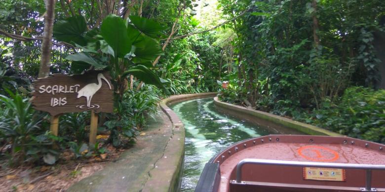 Larut Dalam Nuansa Sungai Mekong Sampai Amazon Di Singapura