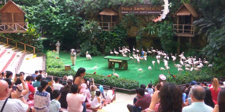 Nuansa Kental Kebun Raya Bogor Di Jurong Bird Park, Singapura