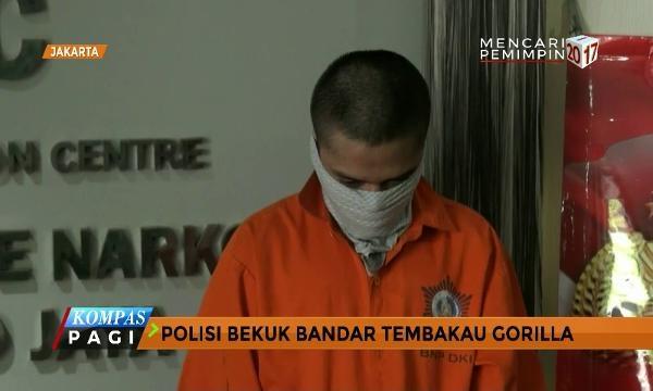Polisi Bekuk Bandar Tembakau Gorilla Berjaring Online