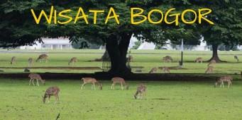 Berwisata ke Bogor, Kotanya Prabu Siliwangi