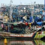 OJK: Premi Asuransi Nelayan yang Ditanggung Pemerintah Rp 250.000 per Tahun
