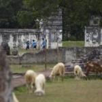 Delegasi PATA Travel Mart Akan Kunjungi Sejumlah Obyek Wisata